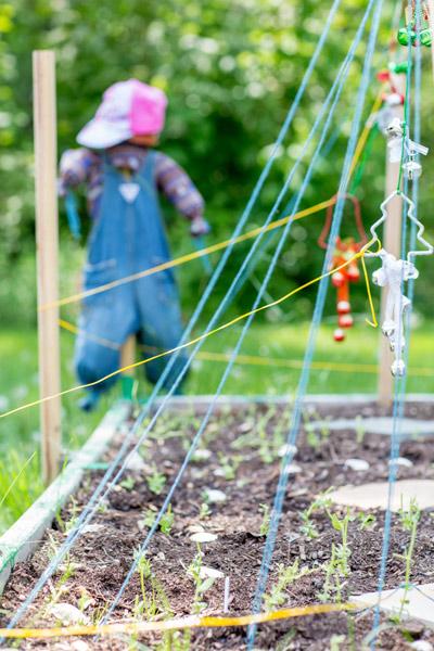 YWCA_garden