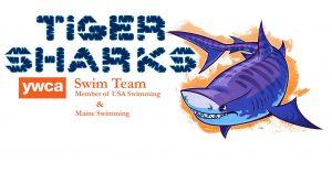 Tiger Shark logo updated